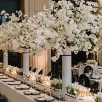 Weddings,Parties, Conferences,